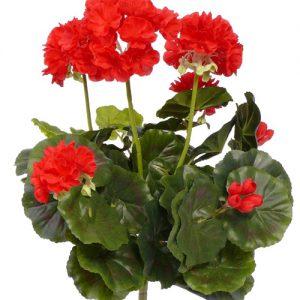 Kunst geranium rood Deco Trade