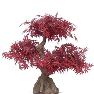 Kunstboom Maple Bonsai Deco Trade