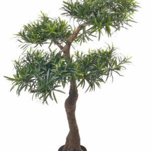 Kunstboom Bonsai Podocarpus Deco Trade