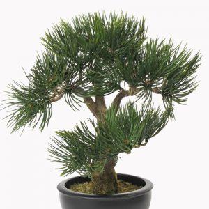 KUnst Bonsai Angel Pine Deco Trade
