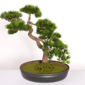 Kunst bonsai Japanse Den Deco Trade