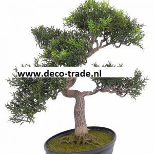 Kunst Bonsai Tealeaf Deco Trade