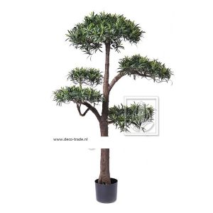 Deco Trade Podocarpus Bonsai 140